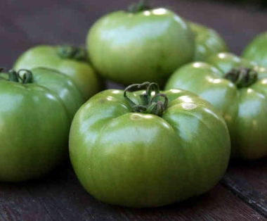 GreenTomatoes3