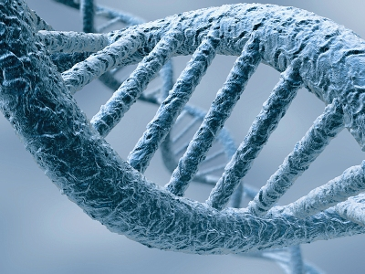 GeneticMedicine4