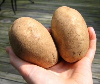 PotatoEAAs3