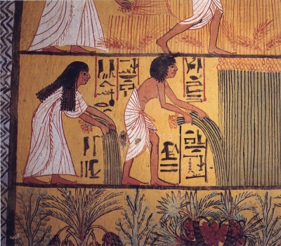 Egyptian_harvest2