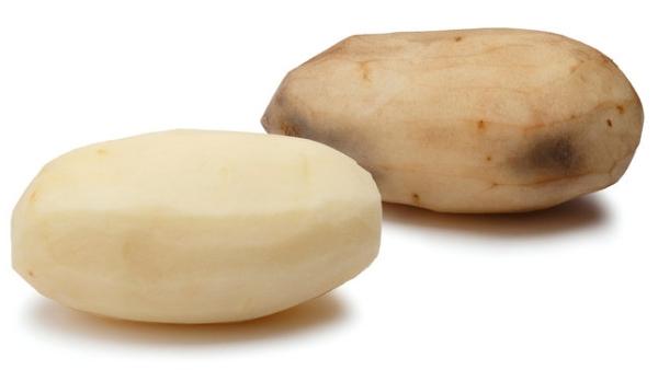 GMOInnatePotato