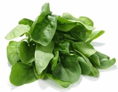 AF5R1X Fresh spinach