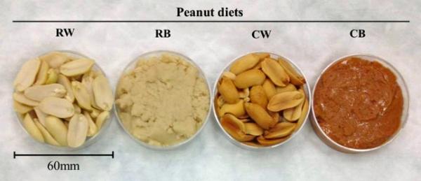 PeanutsRoastedCalories2