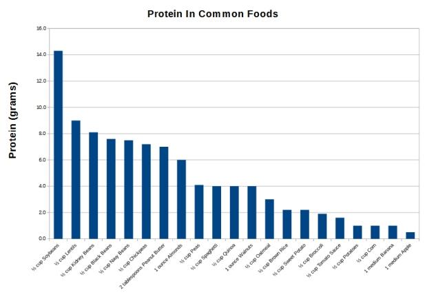 ProteinInCommonFoods2