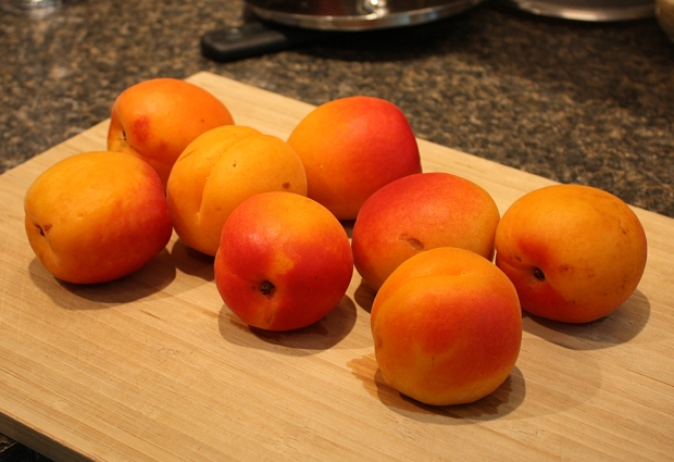 ApricotsStewed3