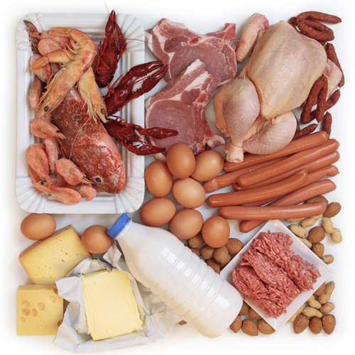 High Protein Foods For Hardgainers