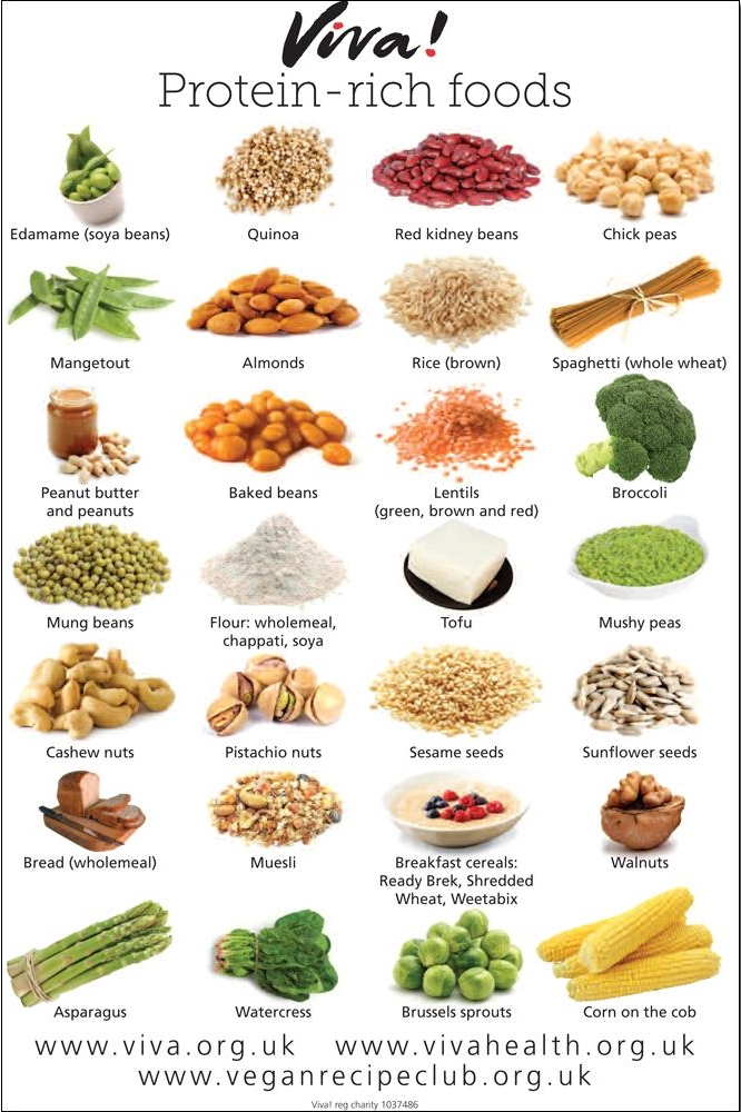 High Protein Foods Grocery Store
